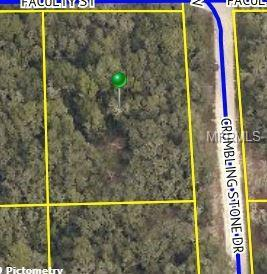 Crumbling Stone Drive, Webster, FL 33597 (MLS #T3158196) :: Griffin Group