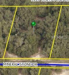 34219 Mineral Stone Drive, Webster, FL 33597 (MLS #T3158200) :: Griffin Group