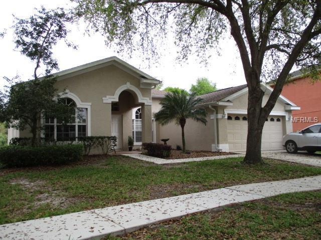 19148 Dove Creek Drive, Tampa, FL 33647 (MLS #T3162622) :: Team Bohannon Keller Williams, Tampa Properties