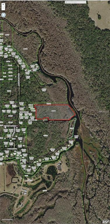 7107 E Basin Court, Hernando, FL 34442 (MLS #T3163875) :: The Duncan Duo Team