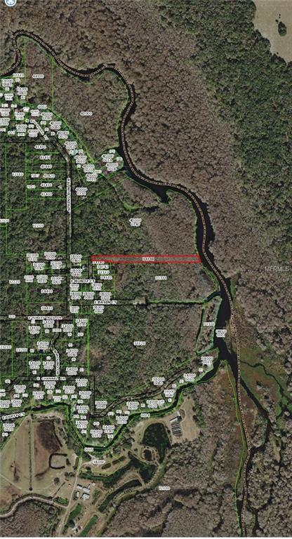 7193 N Toosie Point, Hernando, FL 34442 (MLS #T3164074) :: Cartwright Realty