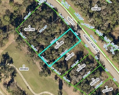 Summit View Drive, Brooksville, FL 34601 (MLS #T3166360) :: The Duncan Duo Team