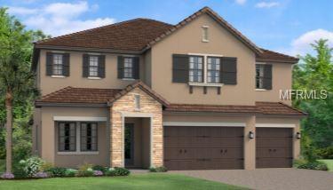 17909 Woodland View Drive, Lutz, FL 33548 (MLS #T3168907) :: Team Suzy Kolaz