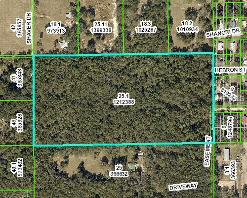 20 Heckman Drive, Brooksville, FL 34601 (MLS #T3169562) :: Cartwright Realty