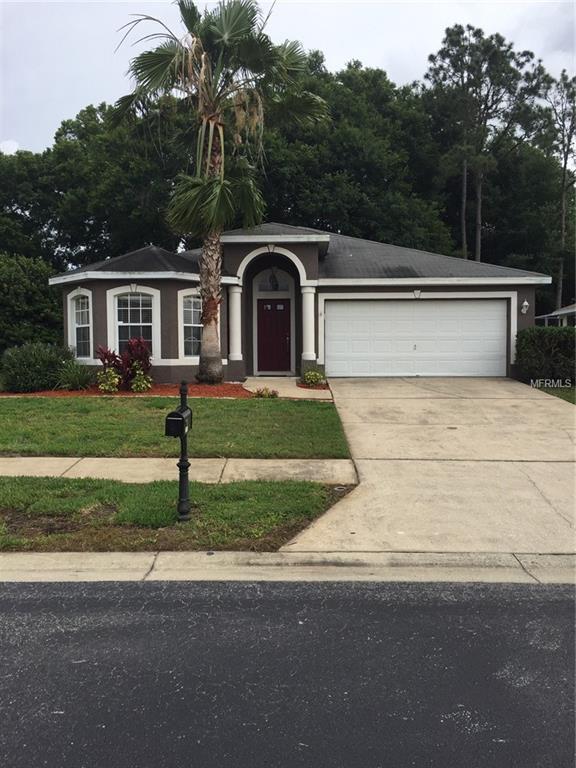 23753 Pow Wow Drive, Lutz, FL 33559 (MLS #T3169851) :: Griffin Group