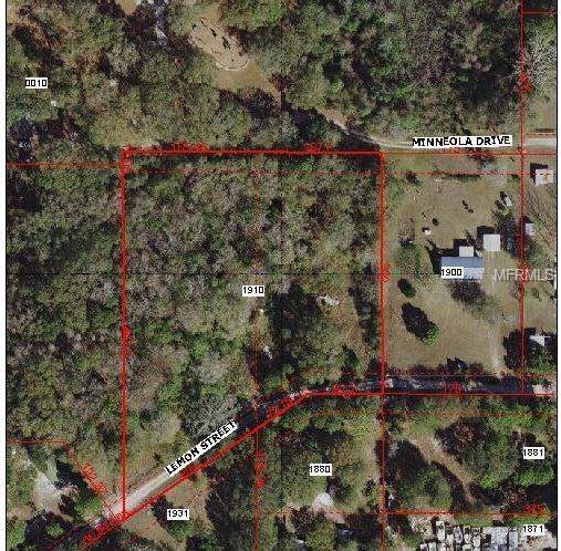 17151 Lemon Street, Spring Hill, FL 34610 (MLS #T3171778) :: Lovitch Realty Group, LLC