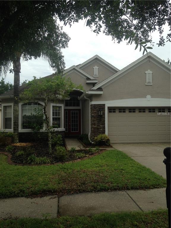 11636 Greensleeve Avenue, Tampa, FL 33626 (MLS #T3175754) :: The Robertson Real Estate Group