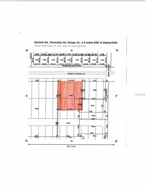 38650 County Road 54 #1, Zephyrhills, FL 33542 (MLS #T3176270) :: Homepride Realty Services