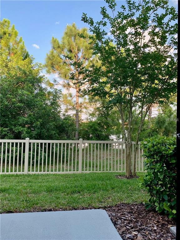9124 Fox Sparrow Road, Tampa, FL 33626 (MLS #T3176905) :: Bridge Realty Group