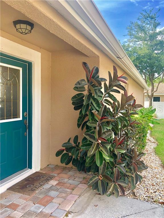 30917 Prout Court, Wesley Chapel, FL 33543 (MLS #T3179253) :: Lockhart & Walseth Team, Realtors