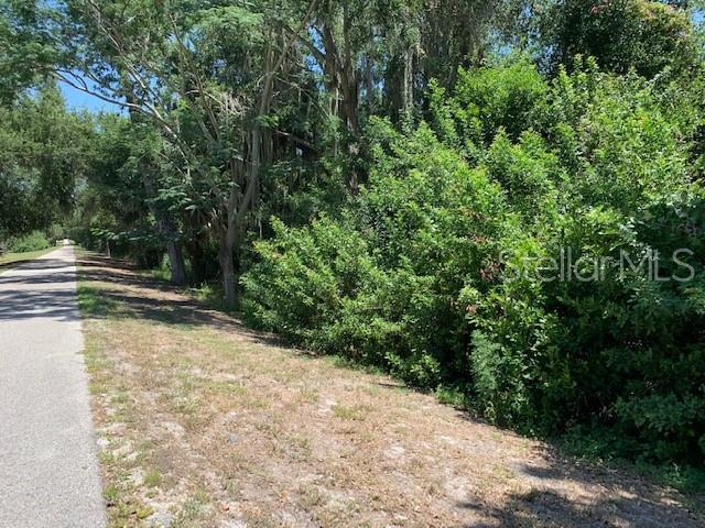 881 Conine Drive W, Winter Haven, FL 33881 (MLS #T3179843) :: The Duncan Duo Team