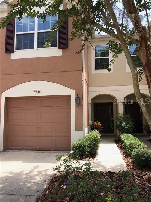 26648 Castleview Way, Wesley Chapel, FL 33544 (MLS #T3182385) :: Lockhart & Walseth Team, Realtors