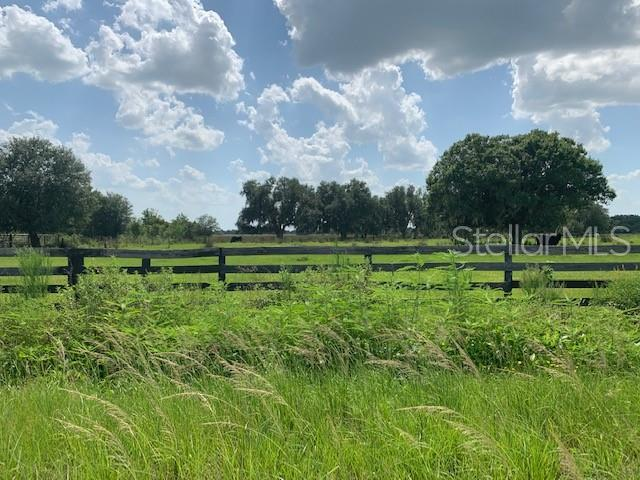 Singletary Road, Fort Meade, FL 33841 (MLS #T3183295) :: Mark and Joni Coulter | Better Homes and Gardens