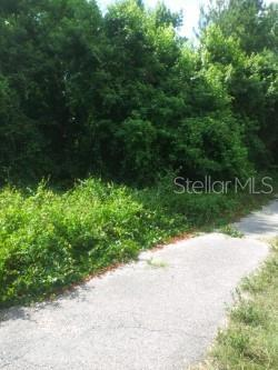 Penny Lane, Dade City, FL 33523 (MLS #T3183622) :: Team 54