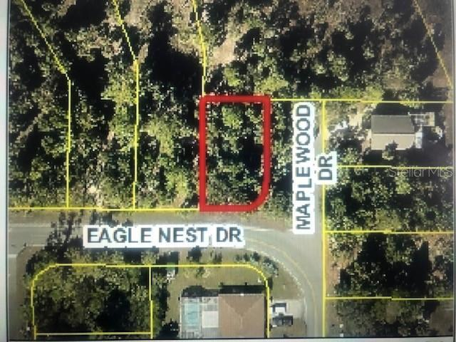 4093 Eagle Nest Drive, Hernando Beach, FL 34607 (MLS #T3184893) :: The Brenda Wade Team