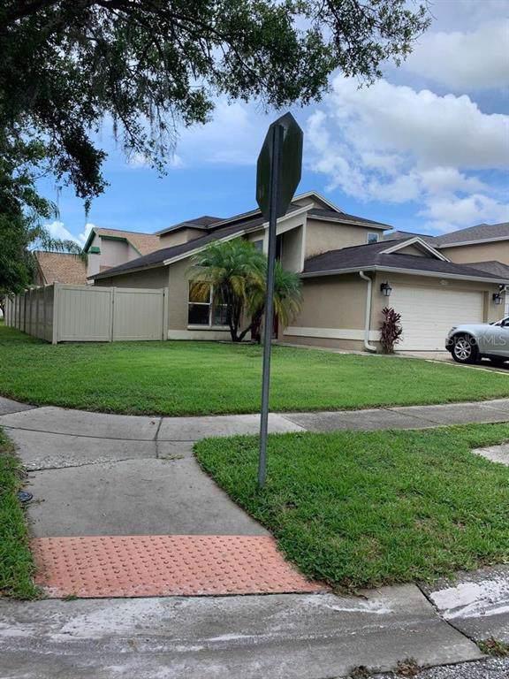6102 Silkdale Court, Tampa, FL 33625 (MLS #T3186927) :: Team 54