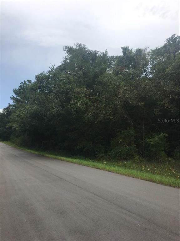 0 August Avenue, Webster, FL 33597 (MLS #T3186949) :: The Edge Group at Keller Williams