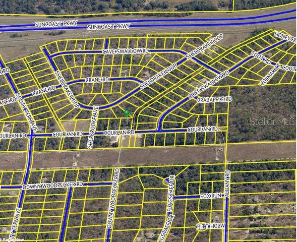 Courlan Road, Weeki Wachee, FL 34614 (MLS #T3187185) :: The Nathan Bangs Group