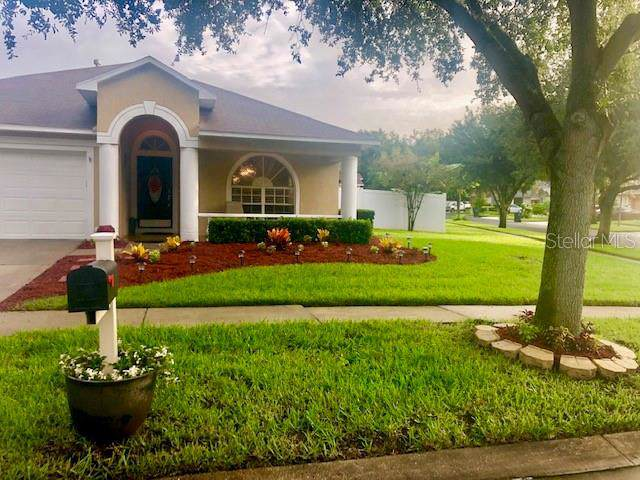 1906 Berry Lake, Brandon, FL 33510 (MLS #T3187200) :: Dalton Wade Real Estate Group