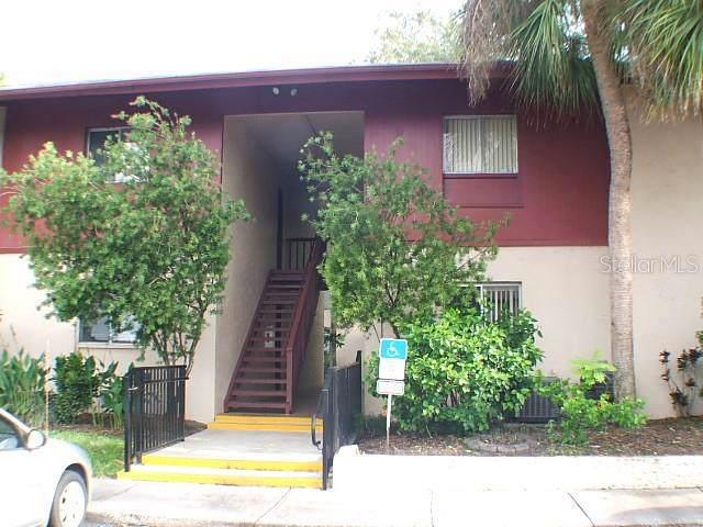 3802 N Lake Drive #22, Tampa, FL 33614 (MLS #T3187954) :: Ideal Florida Real Estate