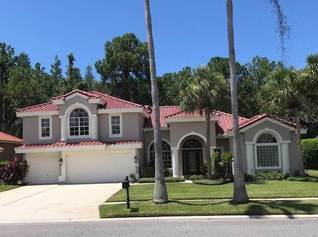 12006 Marblehead Drive, Tampa, FL 33626 (MLS #T3187956) :: Team TLC | Mihara & Associates