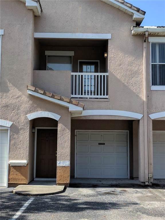 17968 Villa Creek Drive, Tampa, FL 33647 (MLS #T3188329) :: Burwell Real Estate