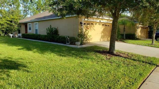4243 Ashton Meadows Way, Wesley Chapel, FL 33543 (MLS #T3188680) :: Delgado Home Team at Keller Williams