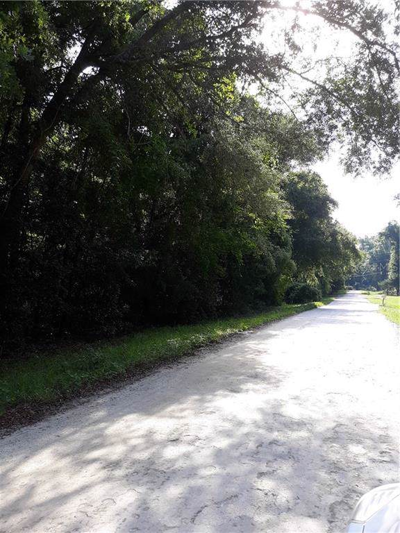 Lot 4 SW Alabama Glen, Fort White, FL 32038 (MLS #T3190799) :: Bosshardt Realty