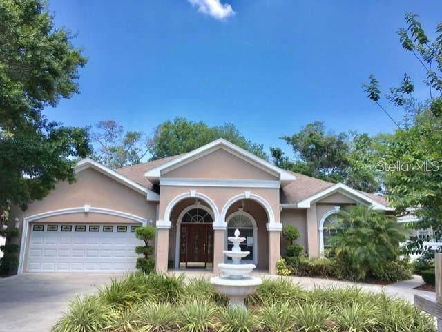 4602 Wishart Boulevard, Tampa, FL 33603 (MLS #T3191323) :: Cartwright Realty