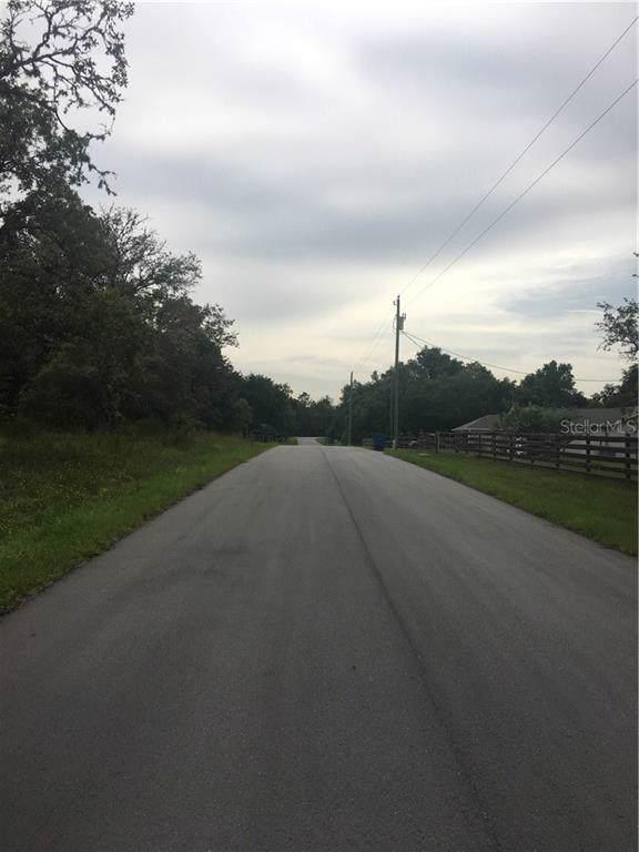33480 August Avenue, Webster, FL 33597 (MLS #T3191449) :: Cartwright Realty
