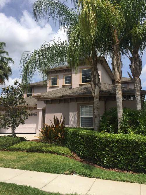 3224 Grassglen Place, Wesley Chapel, FL 33544 (MLS #T3191494) :: Team Bohannon Keller Williams, Tampa Properties