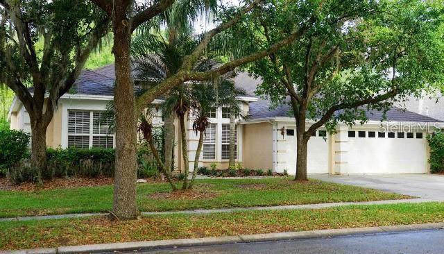 10224 Shadow Branch Drive, Tampa, FL 33647 (MLS #T3191620) :: Team Bohannon Keller Williams, Tampa Properties