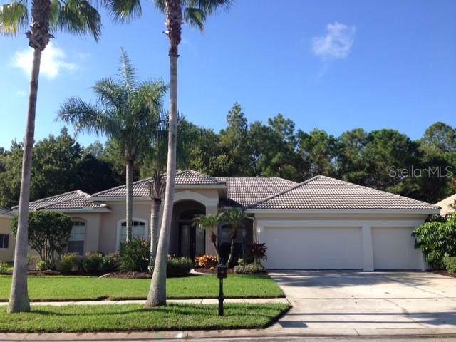 12010 Marblehead Drive, Tampa, FL 33626 (MLS #T3191791) :: Bridge Realty Group