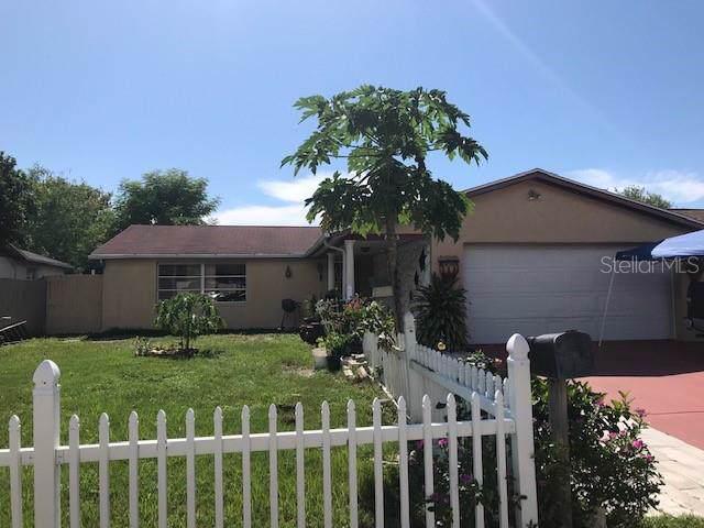 8735 Spanish Moss Drive, Port Richey, FL 34668 (MLS #T3191995) :: The Duncan Duo Team