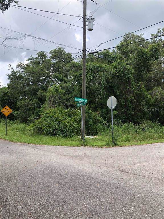 3400 Riderwood Drive, Dade City, FL 33523 (MLS #T3192105) :: Griffin Group