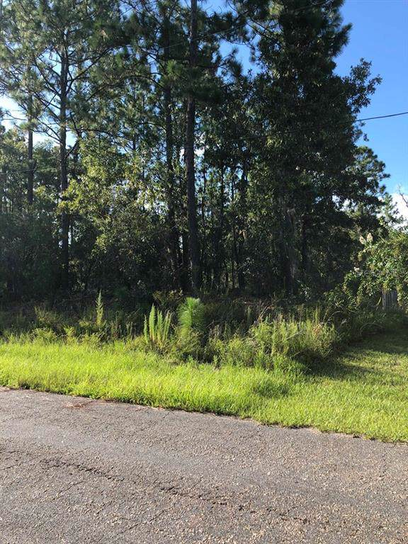 3377 W Edison Place, Citrus Springs, FL 34433 (MLS #T3192472) :: Cartwright Realty