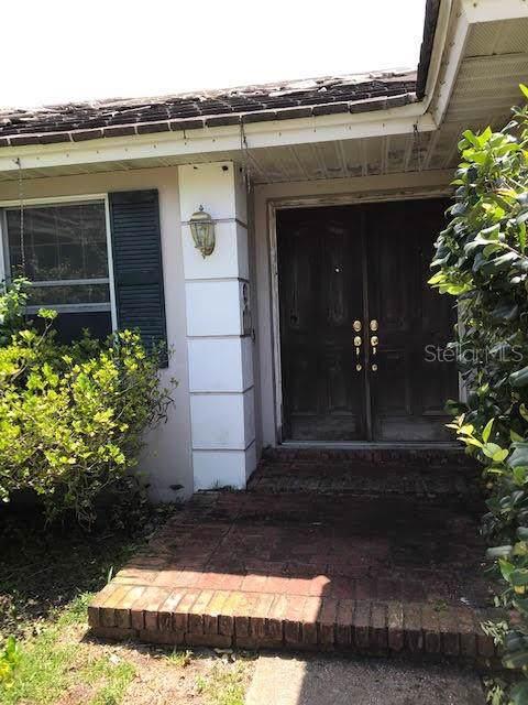 1017 Beaver Drive, Tarpon Springs, FL 34689 (MLS #T3192779) :: Rabell Realty Group