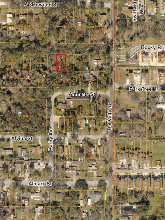 Del Valle, Tampa, FL 33625 (MLS #T3193161) :: GO Realty
