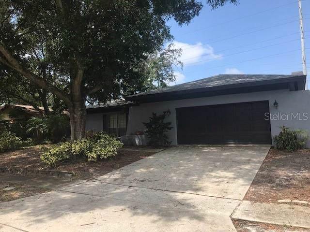 2448 Grove Ridge Drive, Palm Harbor, FL 34683 (MLS #T3193167) :: RE/MAX CHAMPIONS