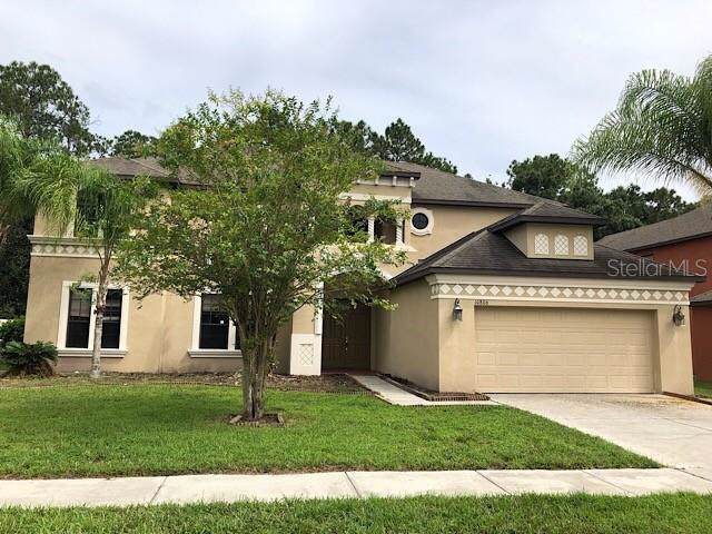 10806 Rain Lilly Pass, Land O Lakes, FL 34638 (MLS #T3193584) :: GO Realty