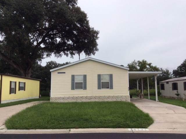 34131 Tree Lake Drive, Wesley Chapel, FL 33543 (MLS #T3194002) :: Burwell Real Estate