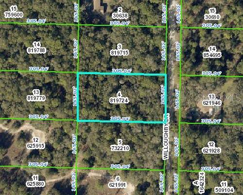7309 Willoughby Drive, Webster, FL 33597 (MLS #T3194664) :: Cartwright Realty