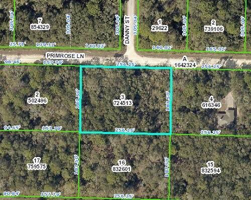 34484 Primrose Lane, Webster, FL 33597 (MLS #T3194670) :: Cartwright Realty