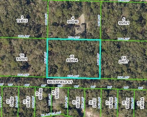 35077 Batesfield Street, Webster, FL 33597 (MLS #T3194673) :: Cartwright Realty