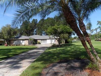 5249 Saddlebrook Way, Wesley Chapel, FL 33543 (MLS #T3196856) :: Armel Real Estate