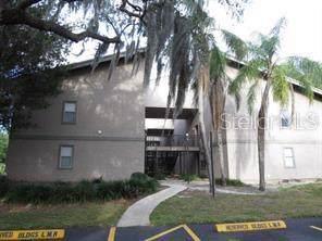 4207 Winding Moss Trail #107, Tampa, FL 33613 (MLS #T3197179) :: Armel Real Estate