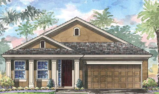 4817 Ballantrae Boulevard, Land O Lakes, FL 34638 (MLS #T3197356) :: Lockhart & Walseth Team, Realtors