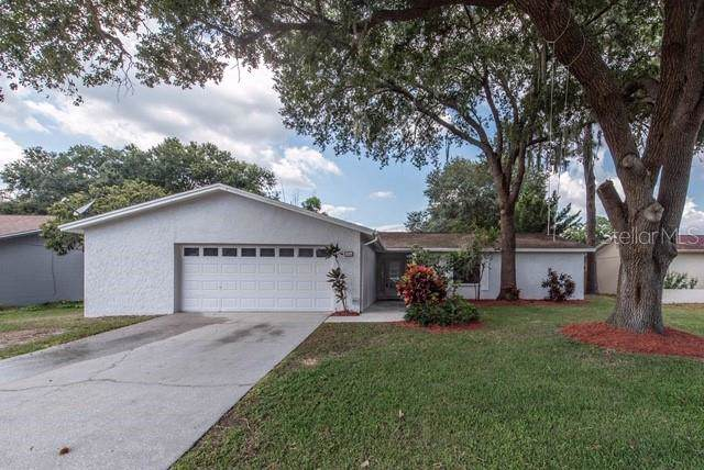 706 Caliente Drive, Brandon, FL 33511 (MLS #T3198291) :: Cartwright Realty
