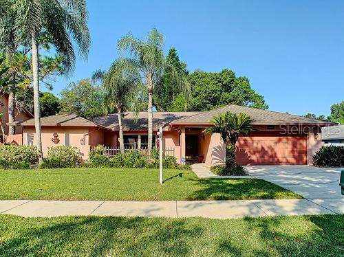 3130 Lake Valencia Lane E, Palm Harbor, FL 34684 (MLS #T3199139) :: Gate Arty & the Group - Keller Williams Realty Smart