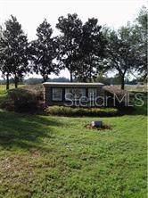 111 Alafia Estates Lane, Plant City, FL 33567 (MLS #T3199846) :: Gate Arty & the Group - Keller Williams Realty Smart
